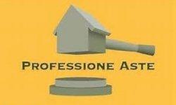 Professione Aste Sede Torino via TUNISI 108 Torino
